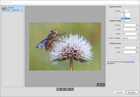 Exportar en Adobe Photoshop CC 2015