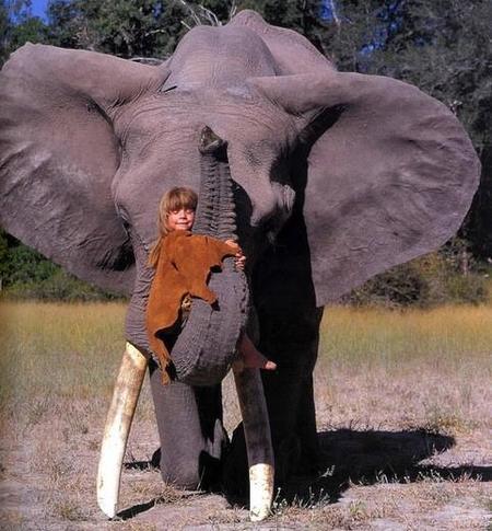 Tippi, el Mowgli de la vida real