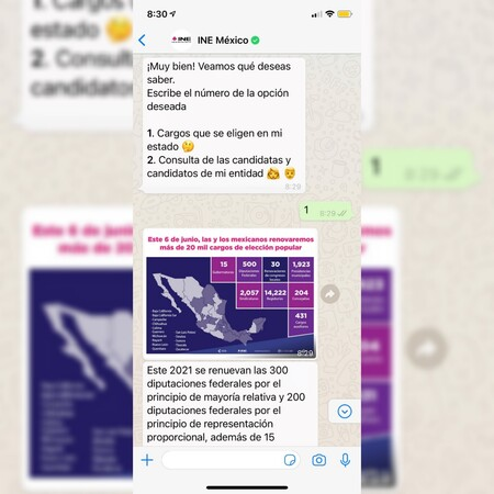 El Ine Tendra Bot En Whatsapp Para Responder Dudas Sobre La Eleccion Del 6 De Junio En Mexico