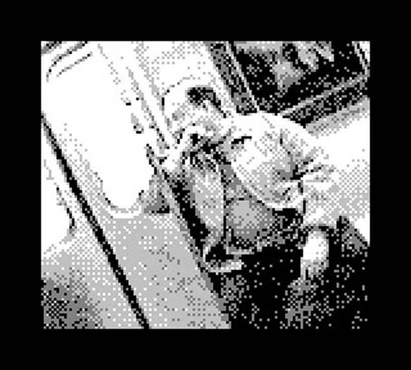 Foto de Game Boy Camera (5/11)