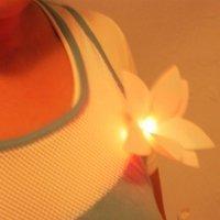 Una flor luminosa en la solapa para localizar redes wifi