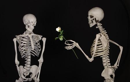 Skeletal 601213 960 720
