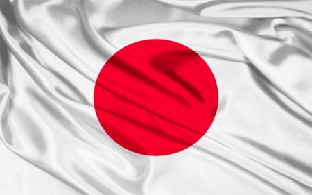 El Gobierno de Japón distribuye archivos falsos en las redes P2P para frenar la piratería