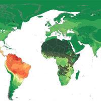 Mapeando el riesgo de pandemias por el mundo: así de probable es que te afecte la siguiente