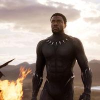 Black Panther y Wonder Woman han reventado en taquilla. La industria defendía que algo así era imposible