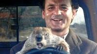 """Cinco """"días de la marmota"""" en las series"""