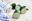 Pepino, una hortaliza muy común en la cocina mediterránea
