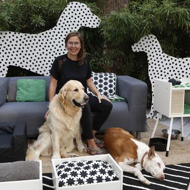 ¡Por fin! Llega a Ikea la (esperada) colección Lurvig con todo lo necesario para tus mascotas