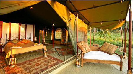Elephant-Pepper-Camp-2