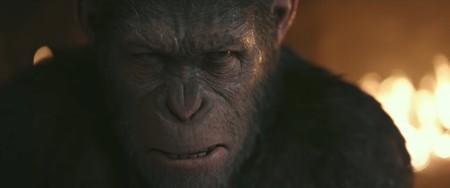 'La guerra del planeta de los simios': espectáculo e intimismo para una obra maestra de la ciencia ficción