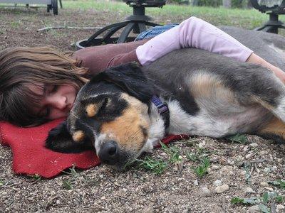 Siete horas después de desaparecer, una niña de dos años fue encontrada en el monte dormida y protegida por su perro