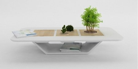 Una mesa con bonsai incorporado