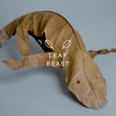 Foto 1 de 10 de la galería hojas-secas en Trendencias Lifestyle