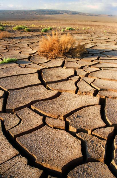 La piel deshidratada necesita agua para reponerse