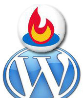 Feedburner Feed Stats, plugin para WordPress