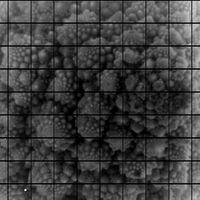 Científicos de la universidad de Standford logran capturar las primeras fotografías con un sensor de 3200 MP de resolución