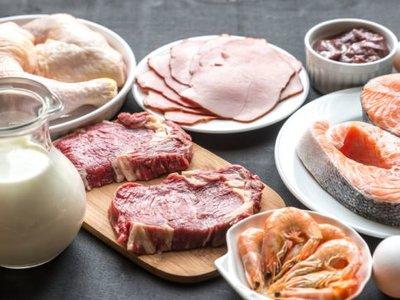 Top 11 de alimentos ricos en proteínas