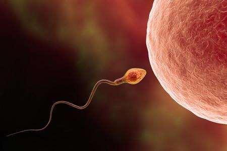 Si te está costando quedarte embarazada, estos son los consejos que pueden ayudarte