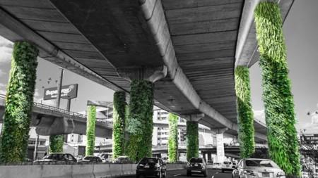 Vía Verde: cuestionable proyecto que busca reducir la contaminación de la Ciudad de México