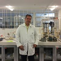 Ingeniería de tejidos una rama de la biomedicina que florece en México