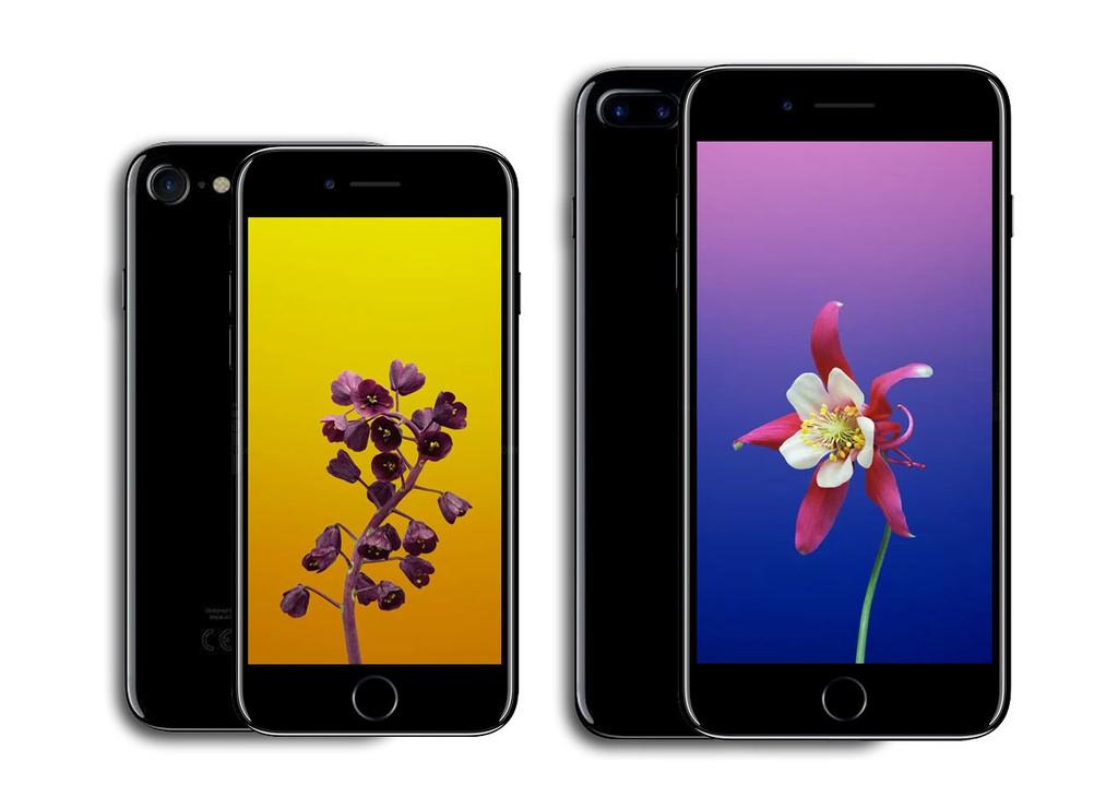 Iphone 8 Iphone 8 Plus 01