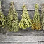 Cómo preparar tu propio adobo de hierbas provenzales para el horno