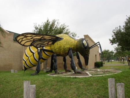 hidalgogiantkillerbee1.jpg