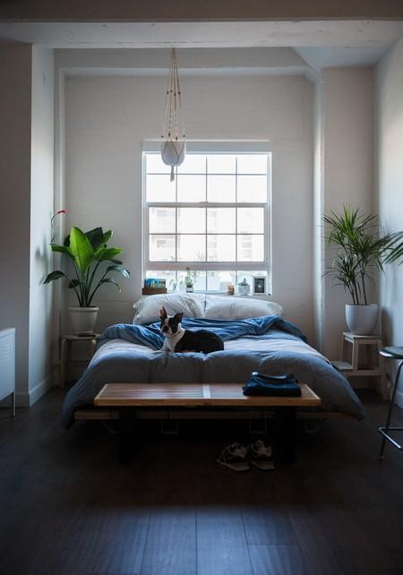 Cómo reformar la casa sin obras