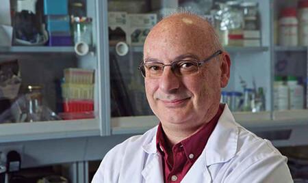 """«Cuando descubrimos CRISPR, me dije: """"esto va a ser una locura en biología"""" y luego no pasó absolutamente nada»: Francis Mojica"""