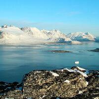 La Antártida y Groenlandia se están derritiendo y en menos de un siglo podría aumentar casi 30 cm el nivel de mar