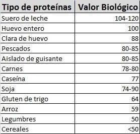 Lista Proteinas Y Valor Biologico
