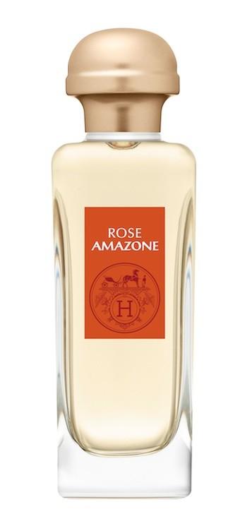 Rose Amazone
