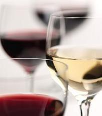 Principios básicos para realizar la guarda de los vinos