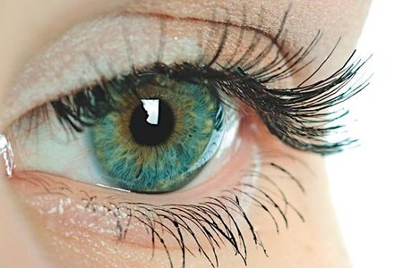Cinco ciegos vuelven a ver gracias a tecnología alemana