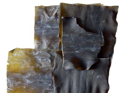 Alga Kombu, un vegetal con muchos beneficios