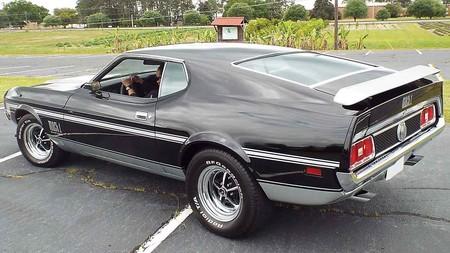 Familia Mustang