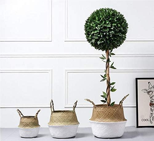DOKOT Cesta Mimbre Decoracion Naturales Cesta para Plantas Almacenaje Macetas Seagrass (22 x 20 cm, Blanco)