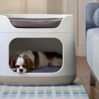 Un práctico y decorativo tres en uno para tus mascotas: cama, cajón y transportín