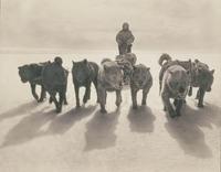 Las primeras e impactantes fotografías de la Antártida
