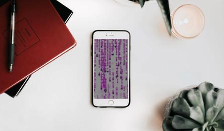 Apple ofrece un millón de dólares a quien sea capaz de hackear un iPhone y también lanza un programa de recompensas para el Mac