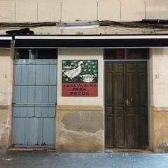 Foto 9 de 19 de la galería htc-u11-camara en Xataka