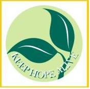 Olivos para la Paz, una marca de aceite con esperanza