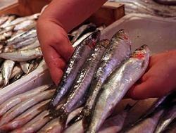 ¿Los productos del mar sólo están en nuestra mesa diez días al mes?