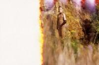 Un poema bucólico por Missoni Otoño-Invierno 2012/2013