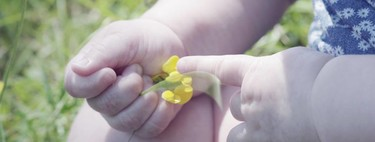 Klorane reformula su gama para bebés e introduce la (maravillosa) caléndula en sus productos