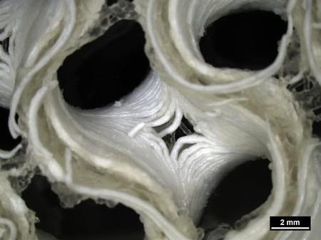 Space 3d Bioprinting 3