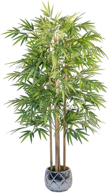 https://www.amazon.es/flor-made-man-Artificial-Naturales/dp/B07CG5XC11/ref=sr_1_46?__mk_es_ES=%C3%85M%C3%85%C5%BD%C3%95%C3%91&dchild=1&keywords=planta+exterior&qid=1590056894&refinements=p_72%3A831280031&rnid=831271031&sr=8-46