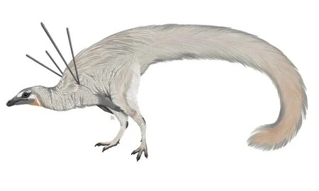 Se encuentra el que posiblemente sea el dinosaurio más raro hallado hasta la fecha