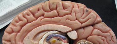Hackear los implantes cerebrales (Brainjacking): una nueva amenaza para la ciberseguridad