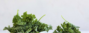 ¿Todavía creéis que el kale y la berza son lo mismo? Pues andáis equivocados y os contamos porqué